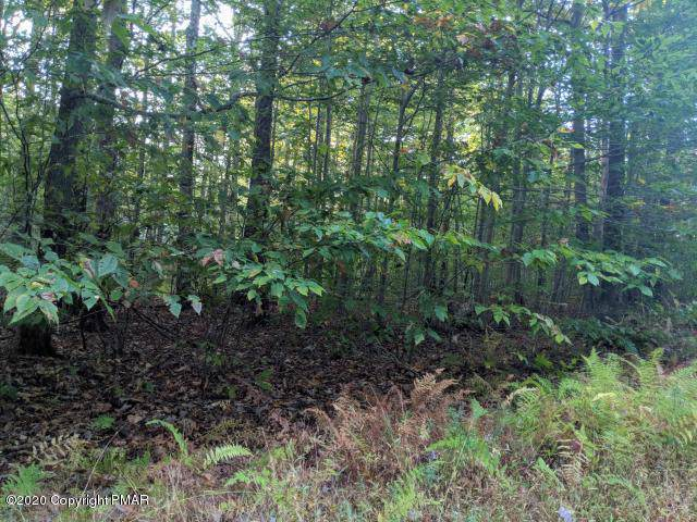 3 Mill Creek Rd, Cresco, PA 18326 (MLS #PM-63877) :: RE/MAX of the Poconos
