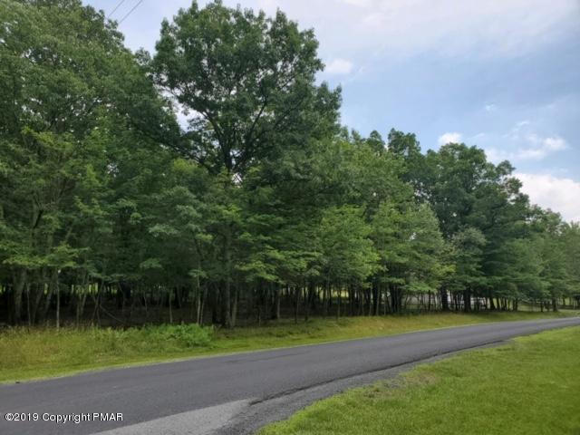 594 Pine  Ridge Drive West, Lehman, PA 18324 (MLS #PM-69464) :: RE/MAX of the Poconos