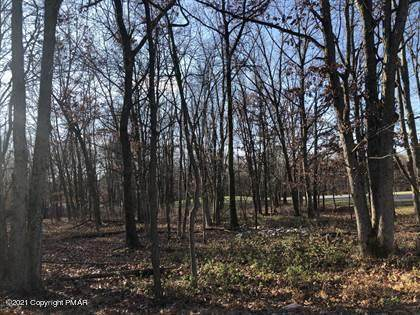 407 Pine Tree Road - Photo 1
