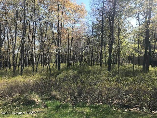67 Pine Needle Rd, Pocono Pines, PA 18350 (MLS #PM-84393) :: Smart Way America Realty