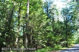 108 Pear Ln, Milford, PA 18337 (MLS #PM-55213) :: Keller Williams Real Estate