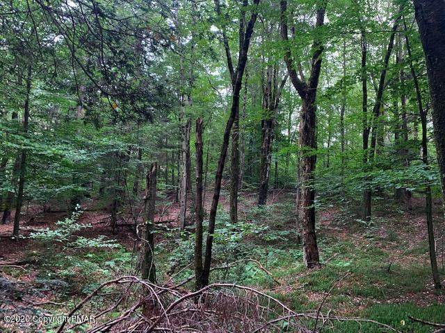 Lot 1 & Lot Off Stoney Hollow Rd - Photo 1