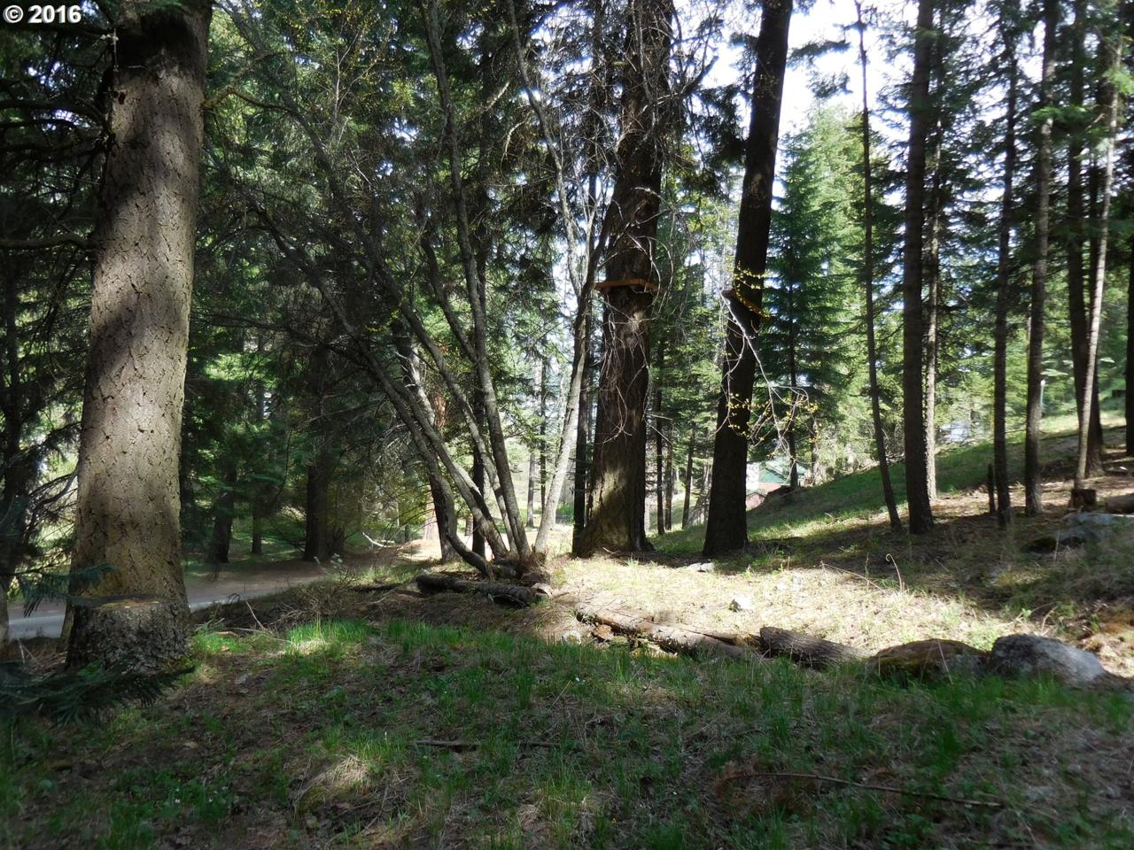 0 Wallowa Lake - Photo 1