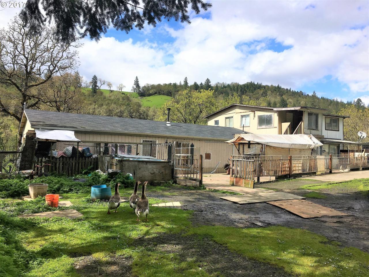 14461 North Umpqua Hwy - Photo 1