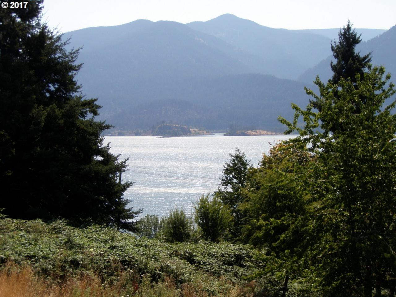 131 Lower Basso Cir - Photo 1