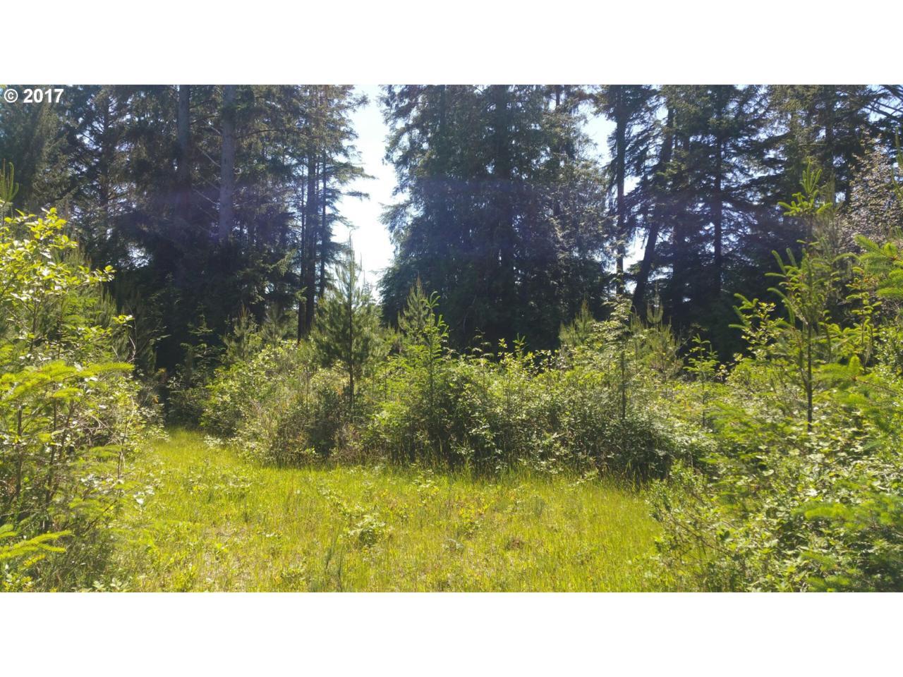 1900 Chets Trail - Photo 1