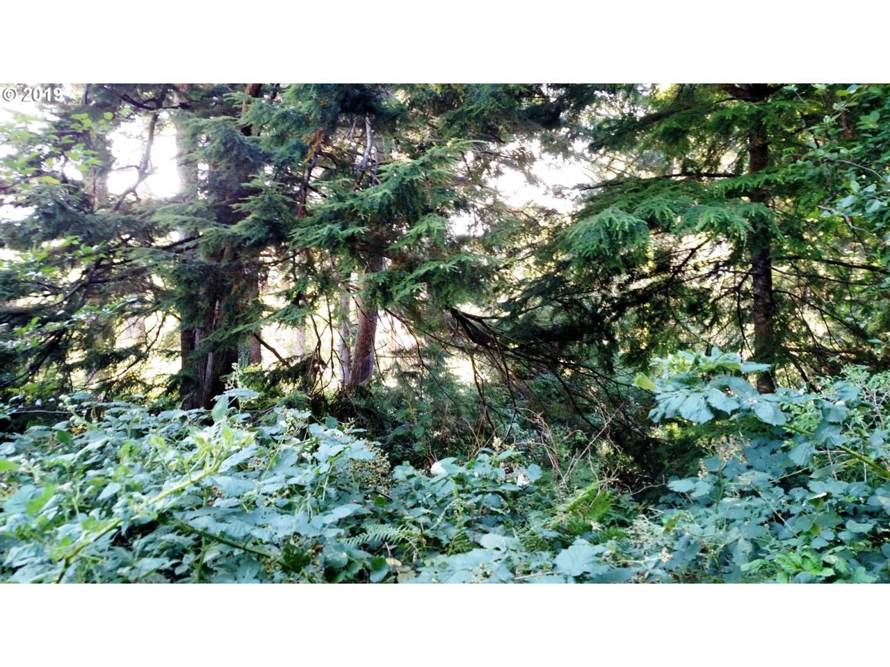 Spruce St - Photo 1