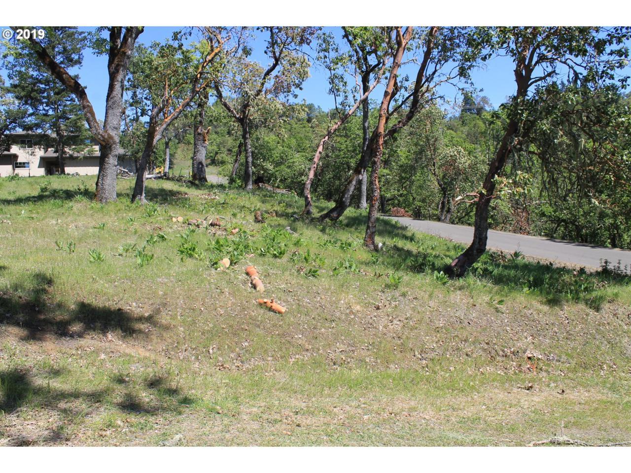 1120 Southridge Way - Photo 1