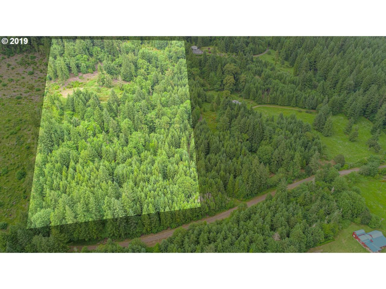 Tl 200 Marks Ridge - Photo 1