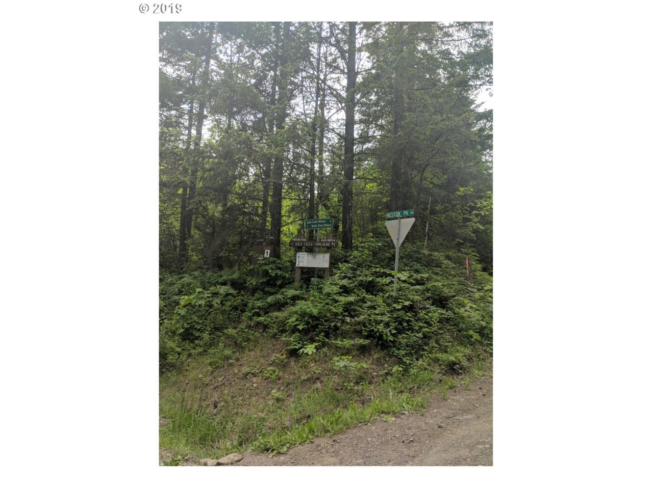 Buck Creek Rd - Photo 1