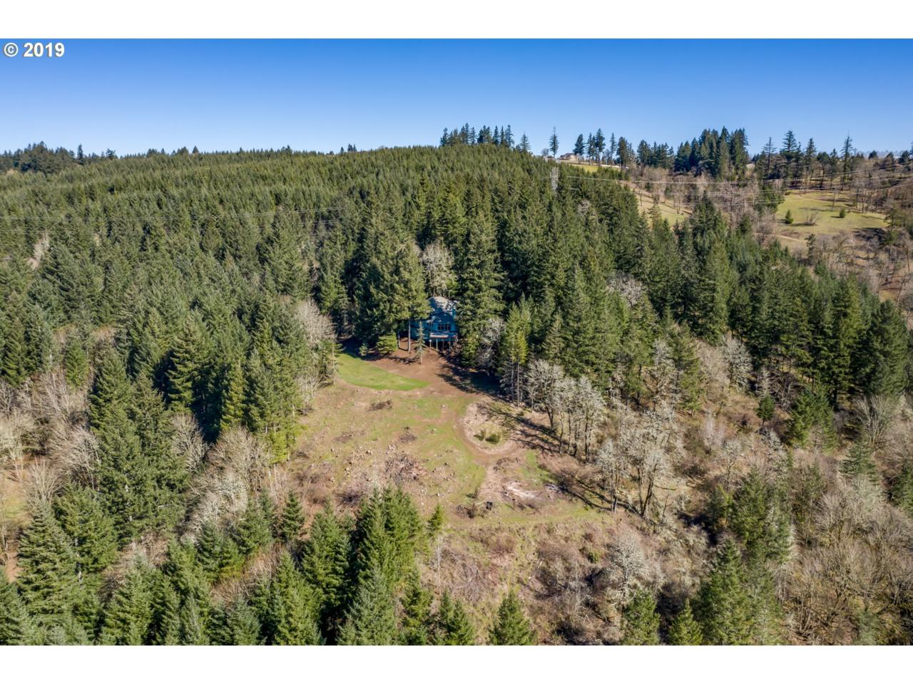 25610 Mountain Rd - Photo 1