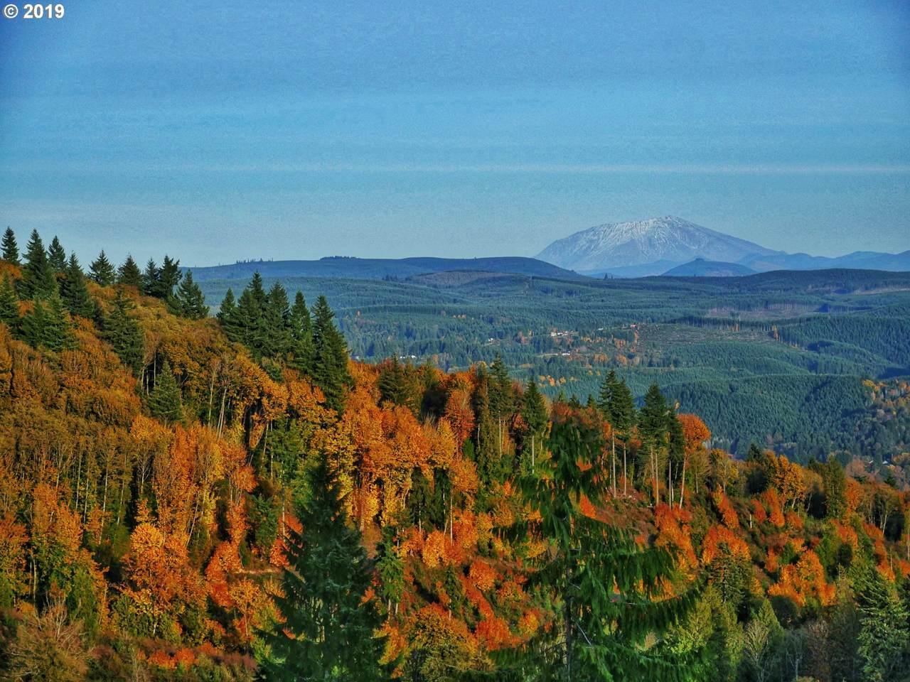 0 Volcano View Ln - Photo 1