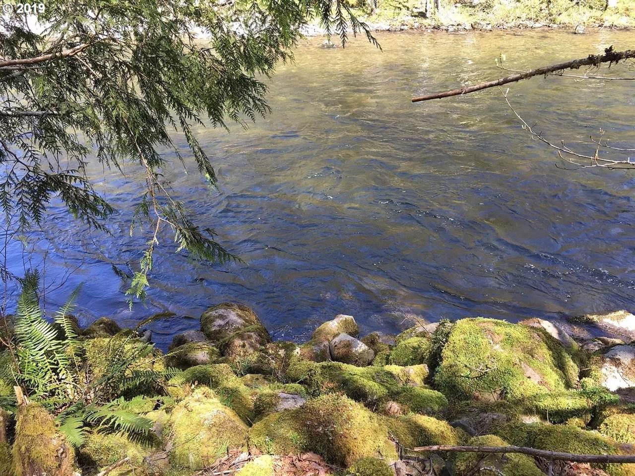 27358 Elk Park Rd - Photo 1