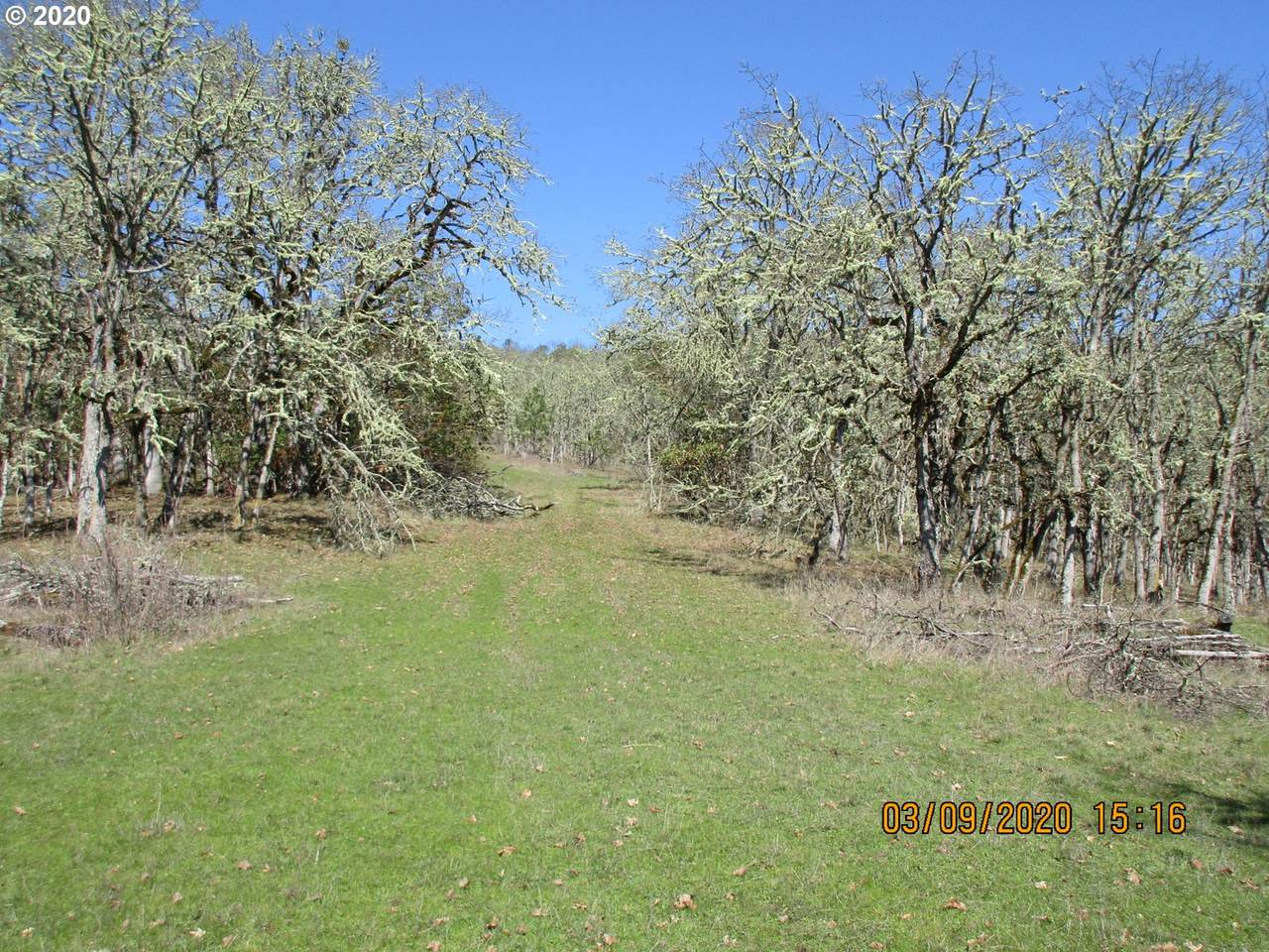 0 Newton Creek Rd - Photo 1