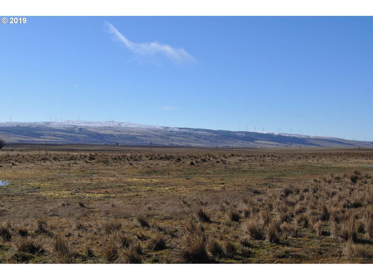 Cowboy Trail Rd - Photo 1