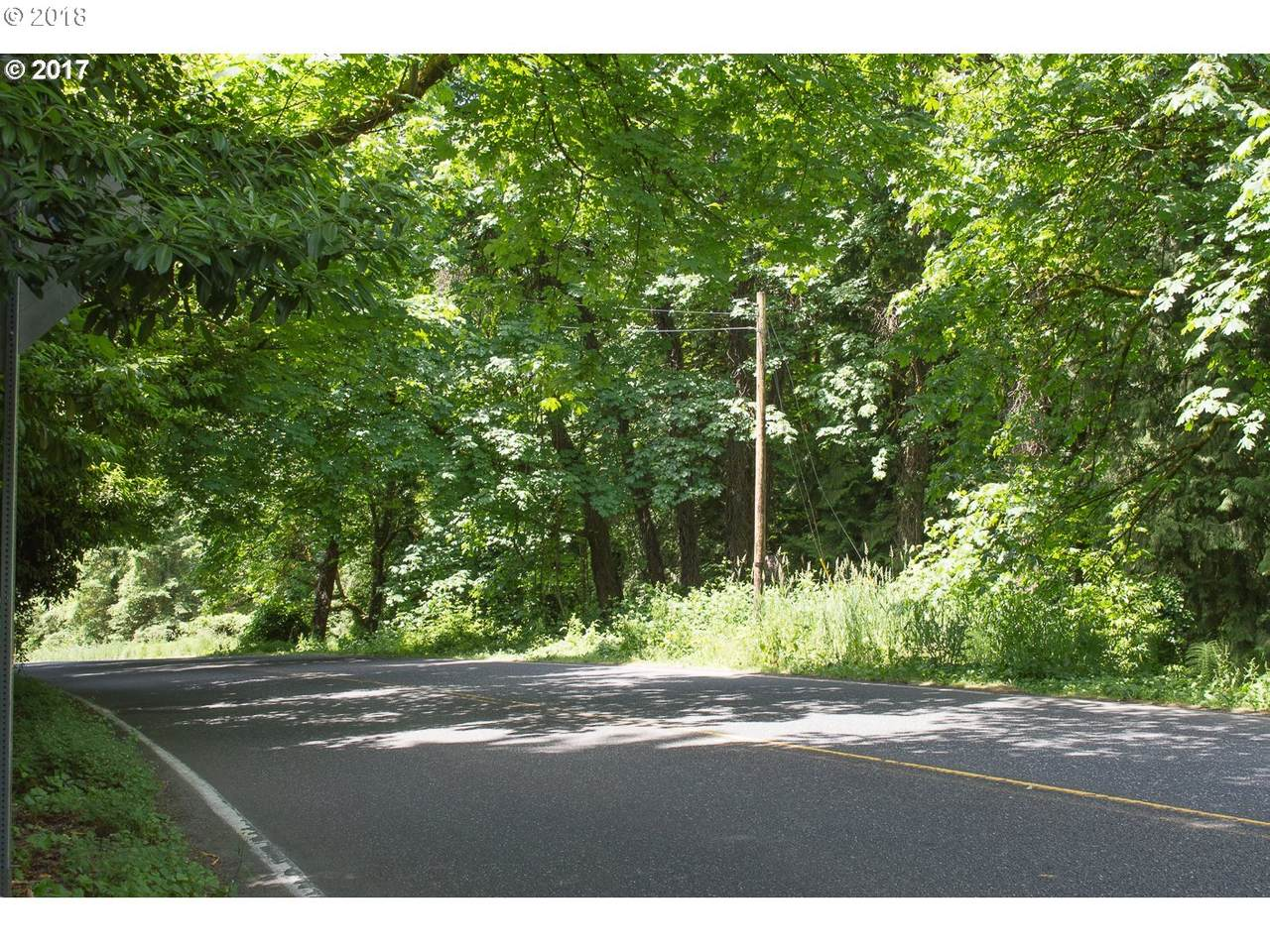 Boones Ferry Rd - Photo 1