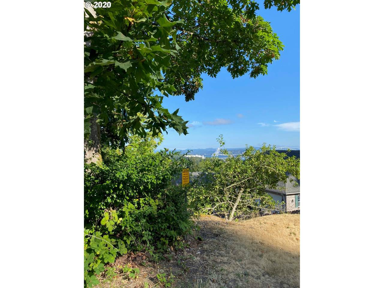 29545 Old Rainier Rd - Photo 1