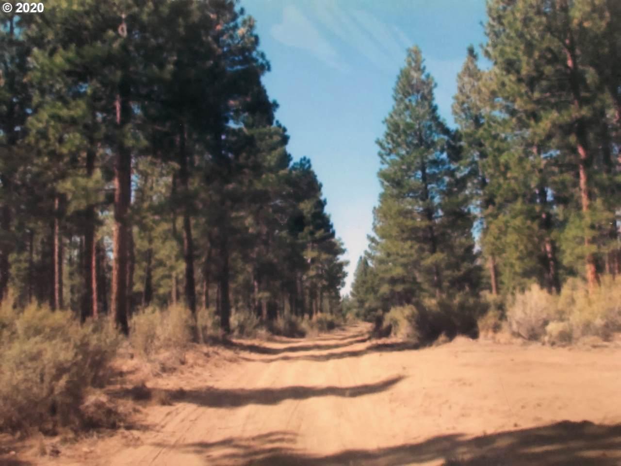 Klamath Forest Estat - Photo 1