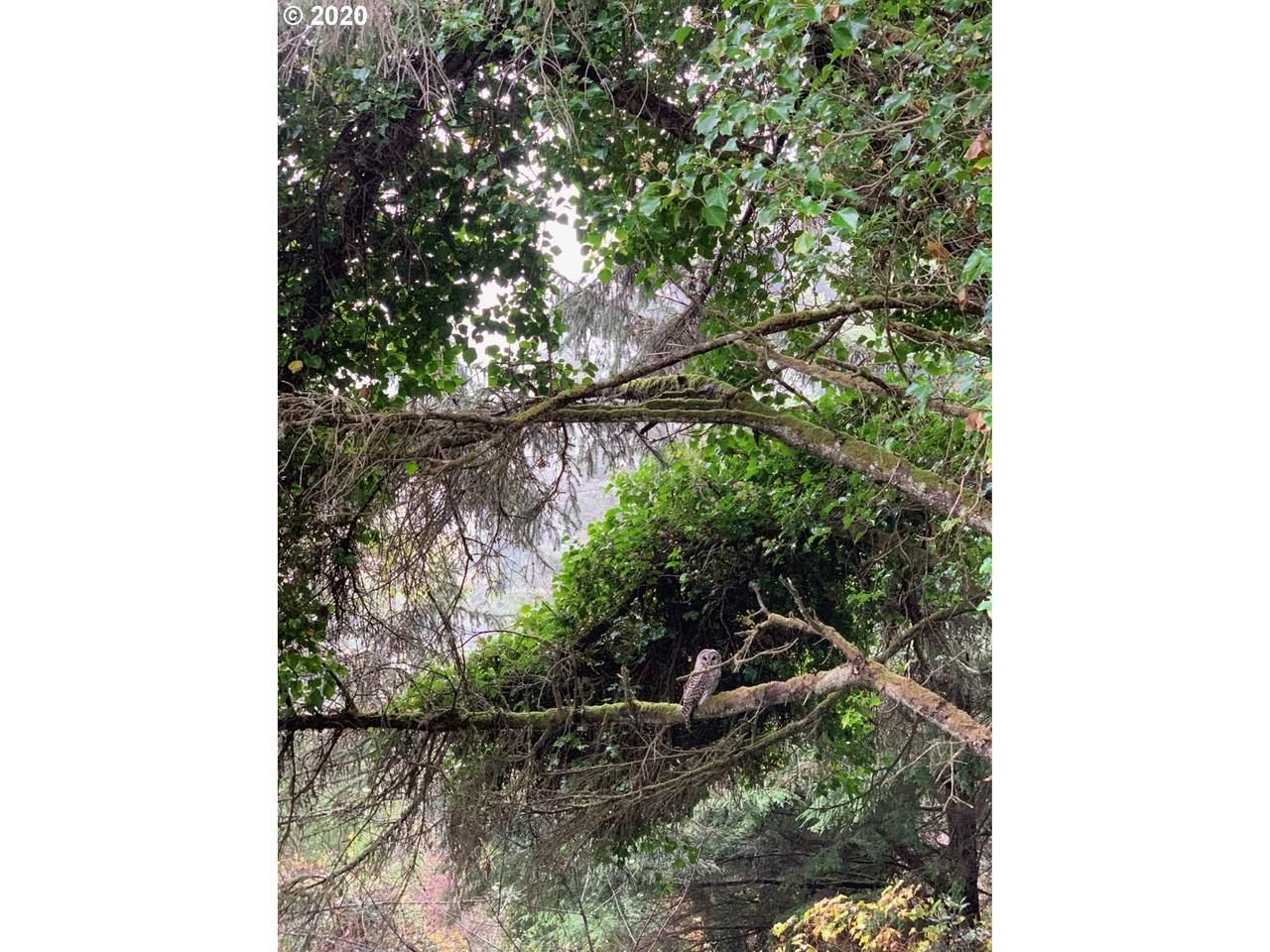 2900 Anchor Ave - Photo 1