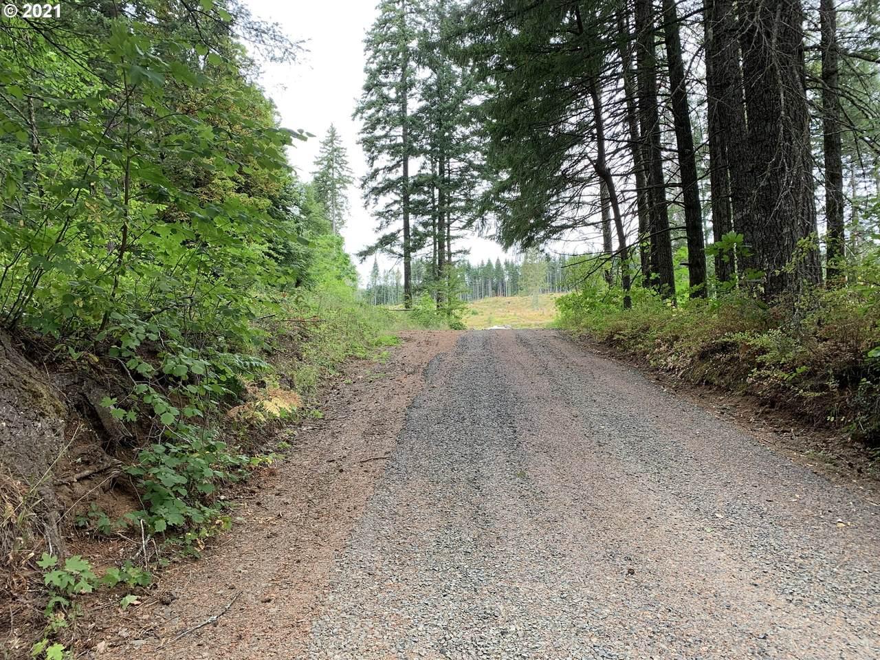 Skaar Wolf Ridge - Photo 1
