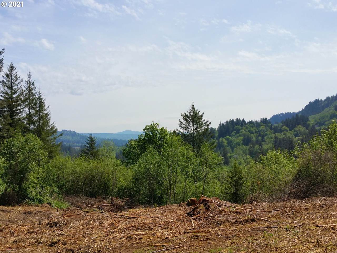 36800 Washougal River Rd - Photo 1