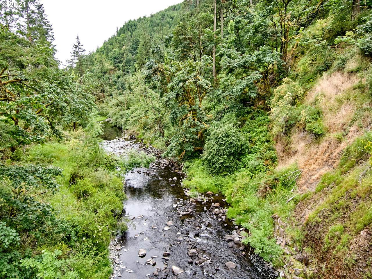 0 Silver Creek Canyon - Photo 1