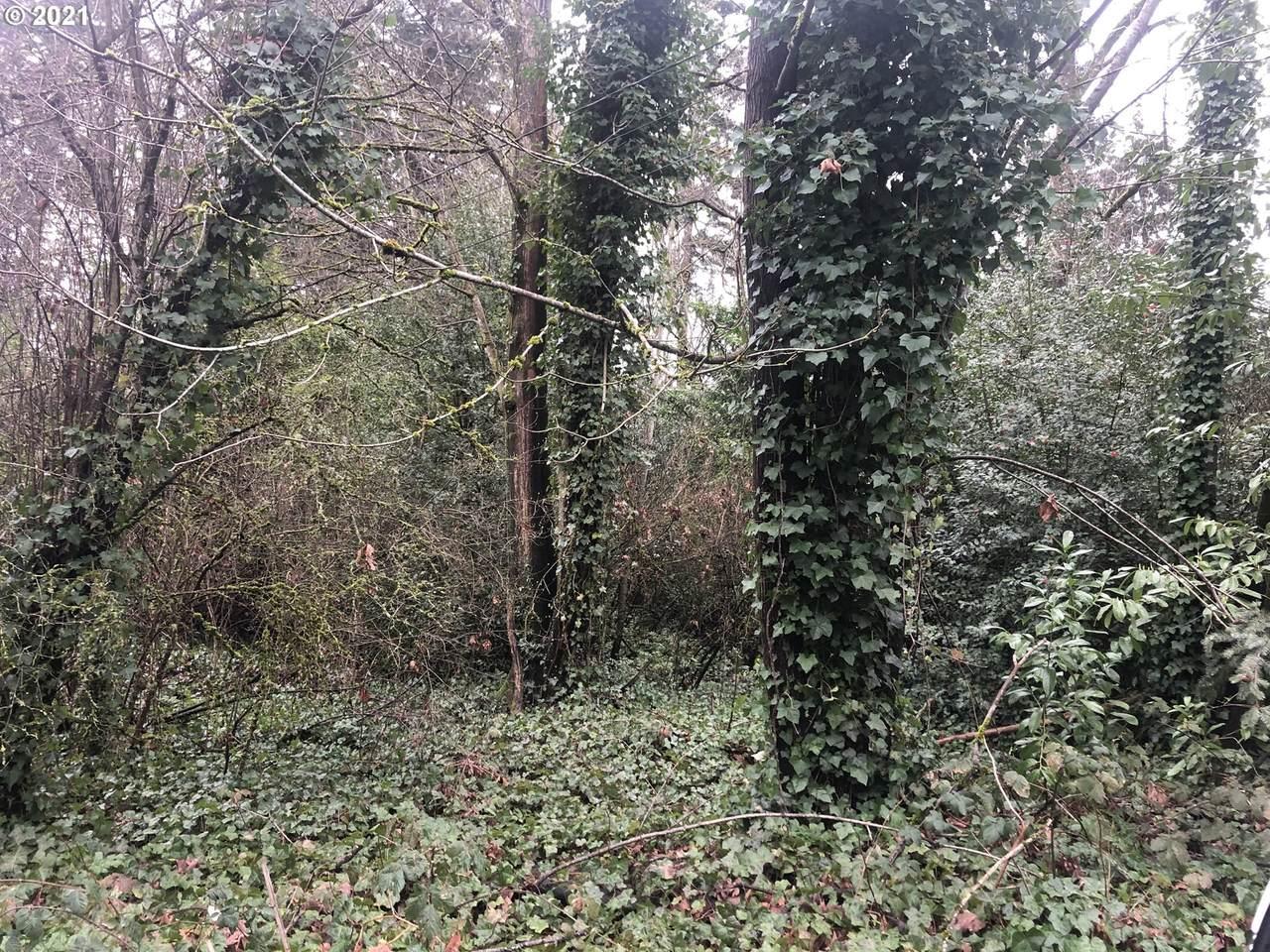 0 White Pine Ln - Photo 1