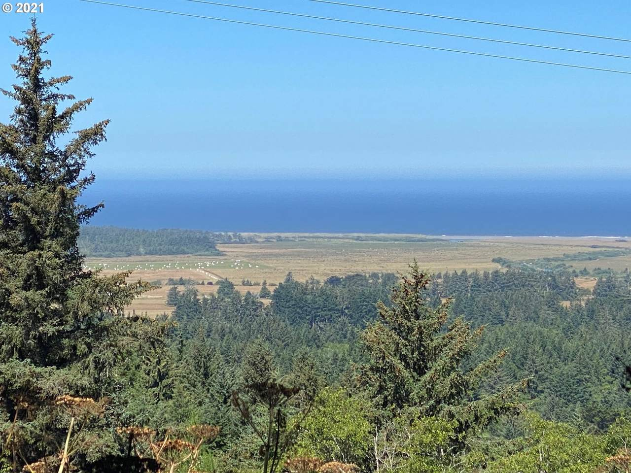 Pacific View Ln - Photo 1