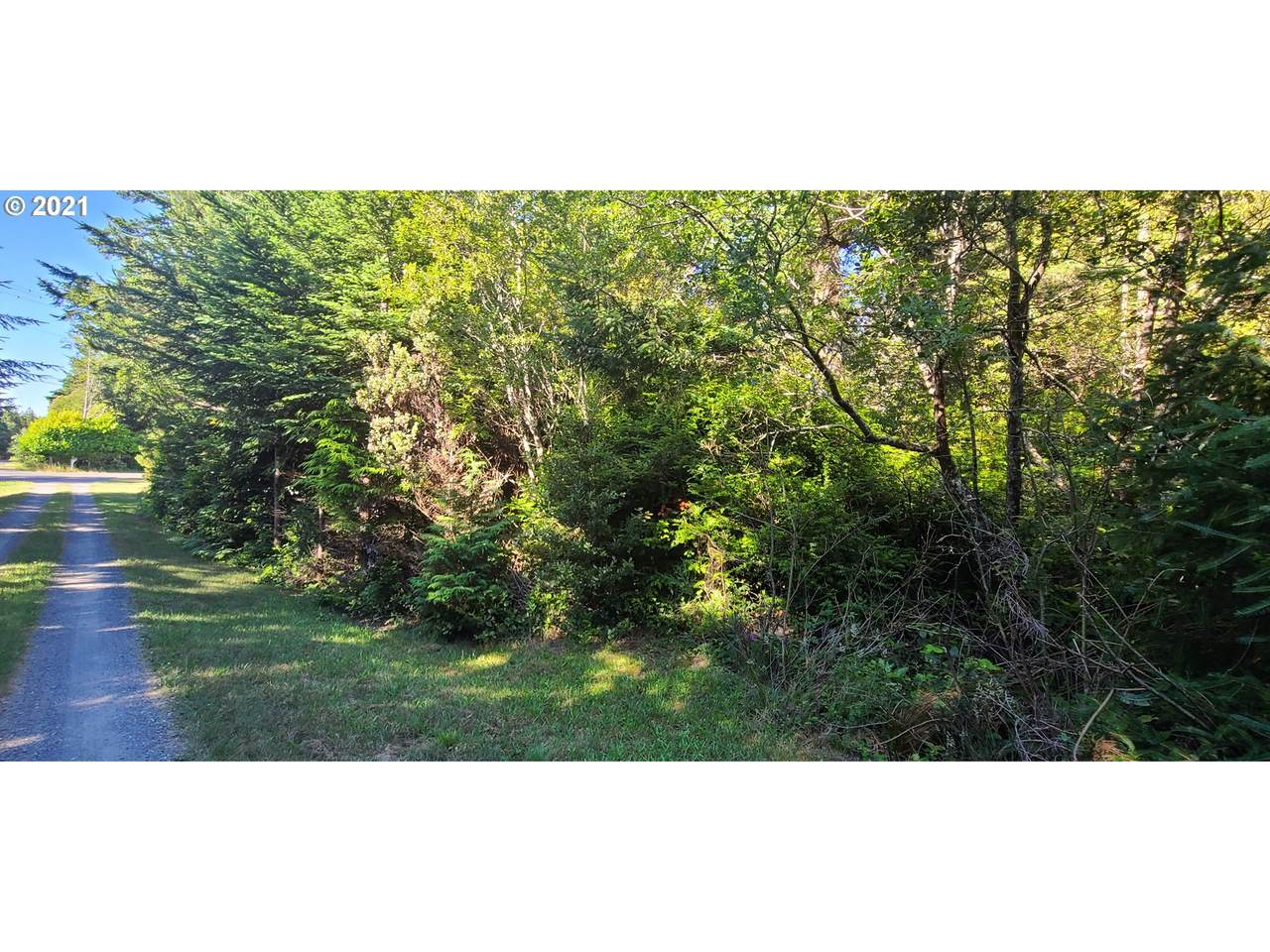 Old Mill Rd - Photo 1