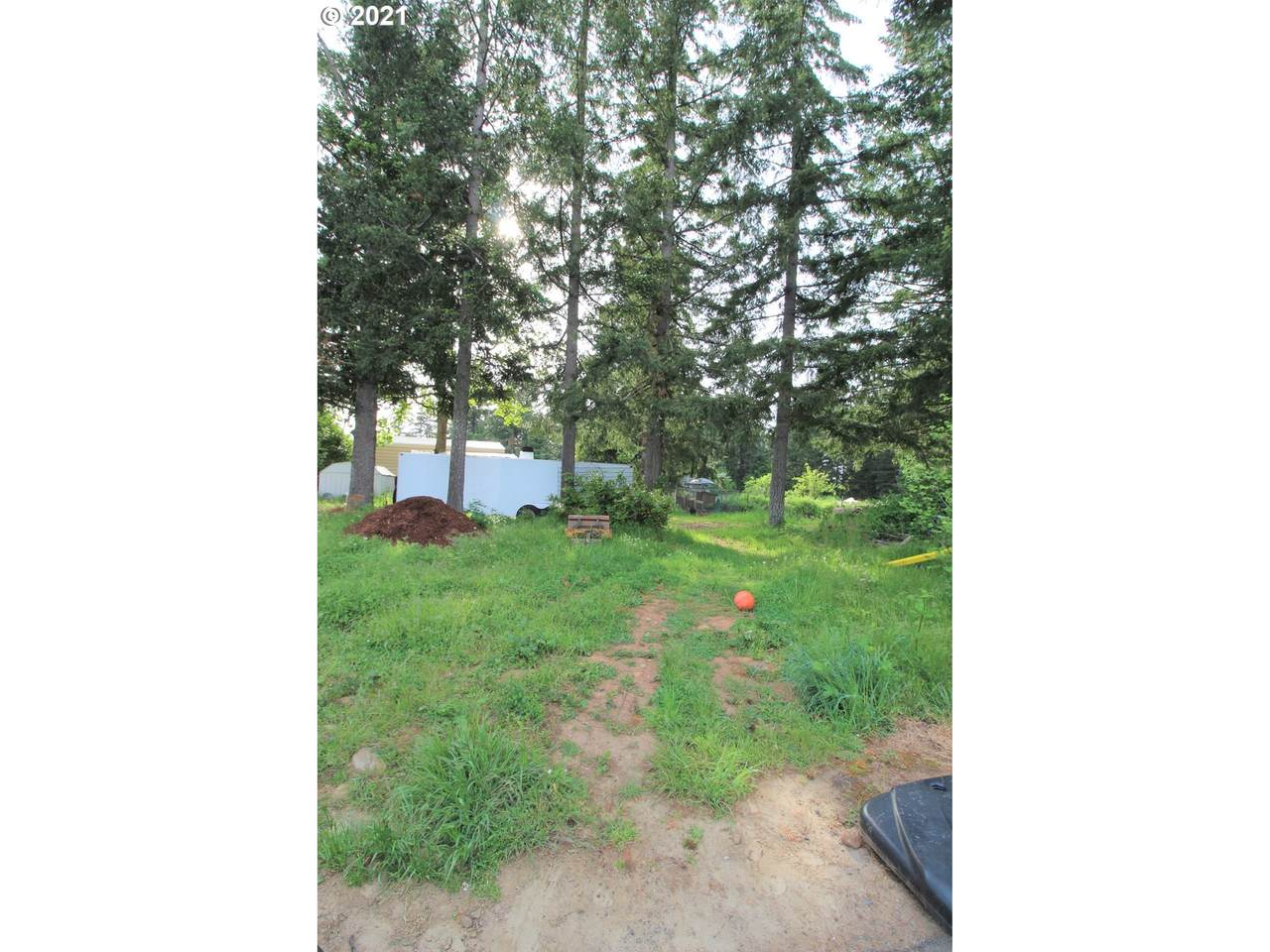 30364 Cemetery Rd - Photo 1
