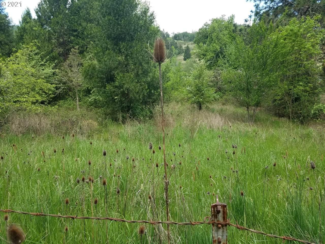 0 Willis Creek Rd - Photo 1