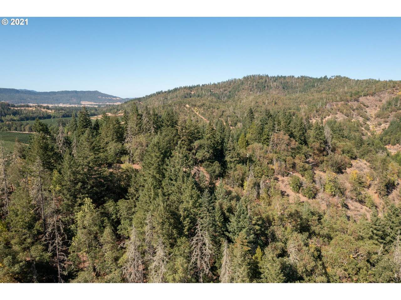 3887 Strickland Canyon Rd - Photo 1