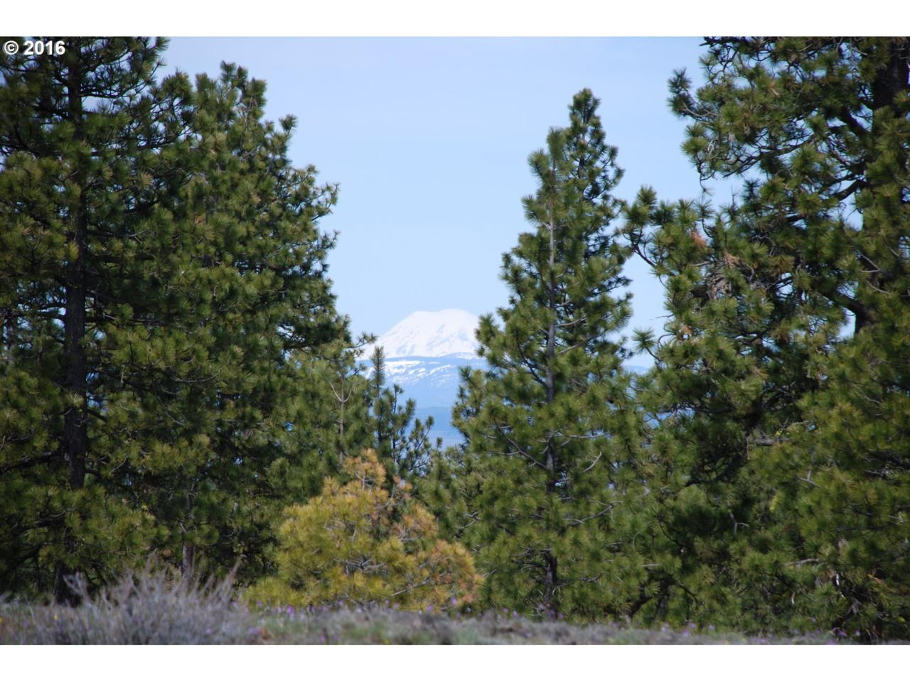 Pine Creek Rd - Photo 1