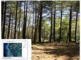 Cape Ferrelo Rd - Photo 1