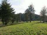 50 Meadowview Ln - Photo 3
