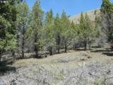 50133 Wiley Creek Rd - Photo 10