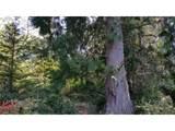 Chets Trail - Photo 18