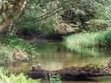Chets Trail - Photo 4