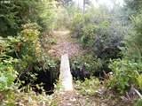 Chets Trail - Photo 6