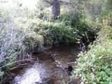 Chets Trail - Photo 8