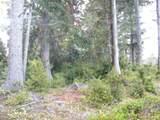 Chets Trail - Photo 9