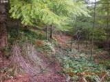 3 Marble Creek - Photo 10