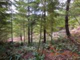 3 Marble Creek - Photo 9