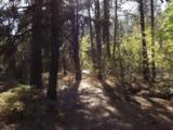 Eagle Creek Rd - Photo 12
