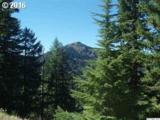 Fairview Peak - Photo 18