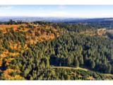 17501 Guenther Rd - Photo 10