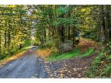 17501 Guenther Rd - Photo 2