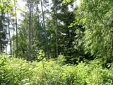 50 Beaver Tree Ln - Photo 3