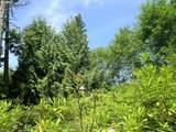 50 Beaver Tree Ln - Photo 5