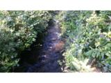 1900 Chets Trail - Photo 8